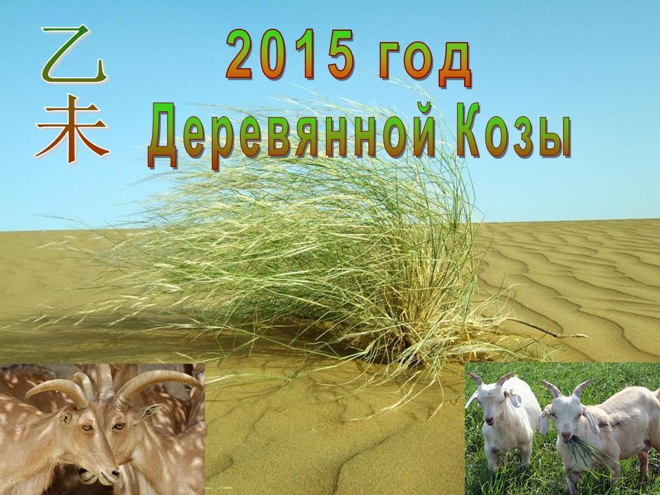 2015 год Деревянной Козы