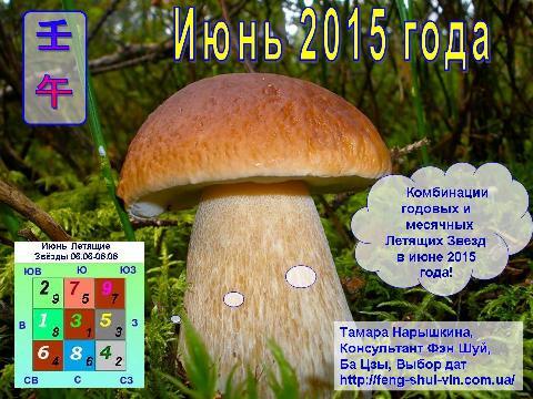 Фэн Шуй прогноз на  июнь   2015 года