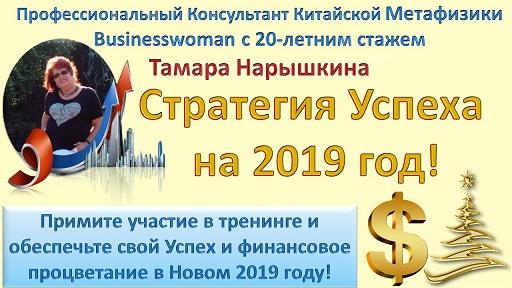 Стратегия Успеха на 2019 год